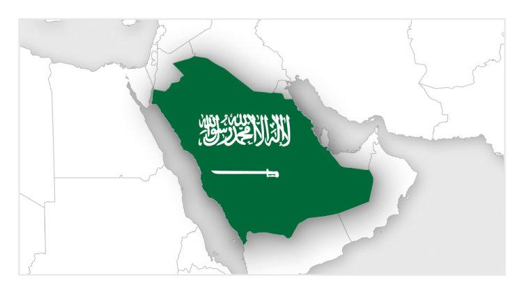 Image result for Systems & Safe Ltd., Saudi Arabia